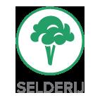 selderij - Vlaai groot (8 persoons)